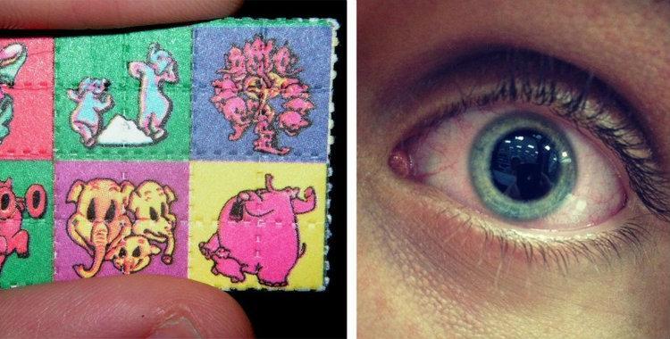 Se mandó una pastilla de LSD, atacó a su novia y se cortó el amigo | El Diario 24