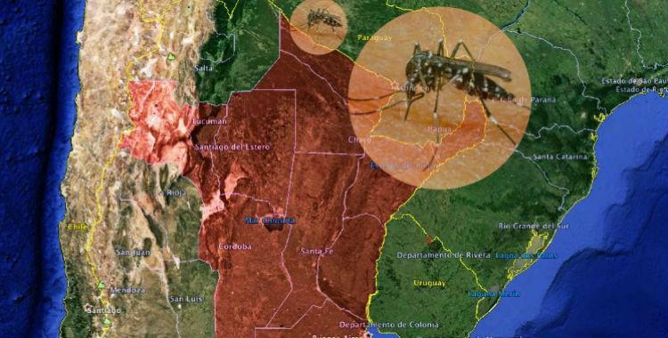 Argentina atraviesa la peor epidemia de dengue de su historia   El Diario 24