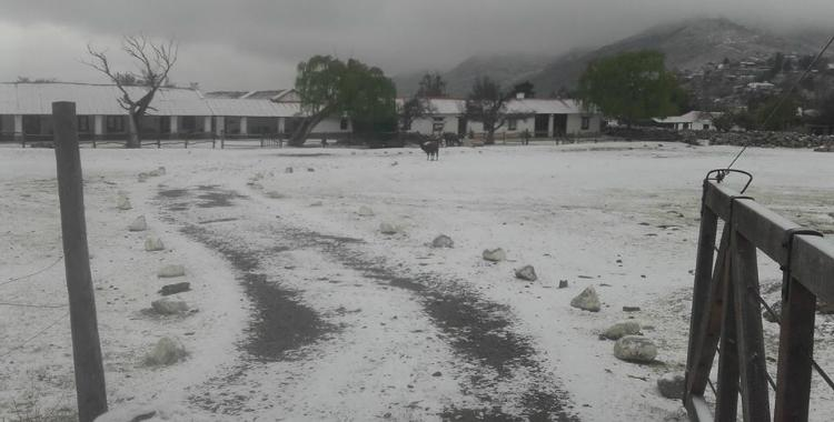 La nieve no abandona los Valles y llegó al centro de Tafí   El Diario 24