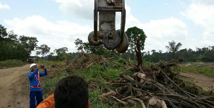 Obreros hallaron una anaconda de 400 kilos luego de una explosión | El Diario 24