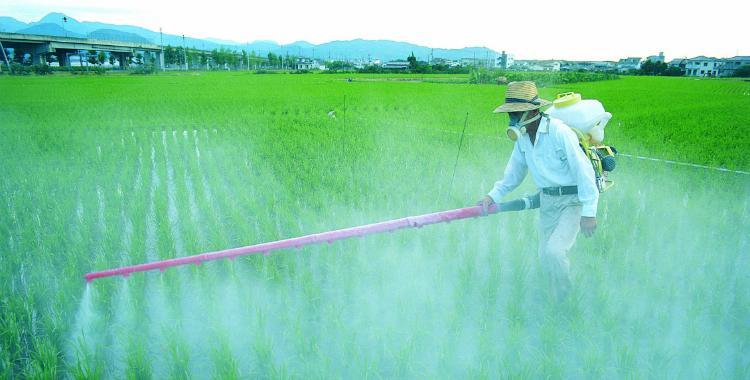 Durante el 2016 aumentó un 50% el uso de agroquímicos y fertilizantes | El Diario 24