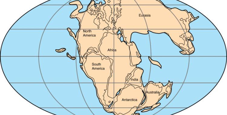 Científicos consideran que los continentes podrían volver a unirse   El Diario 24