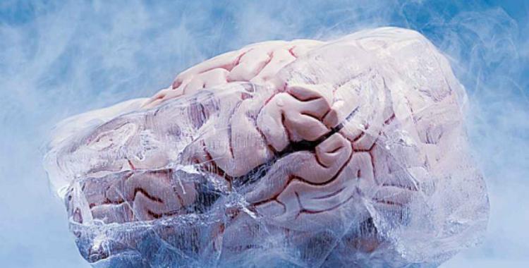 La vida después de la muerte: ¿Es en verdad posible la criogenización?   El Diario 24