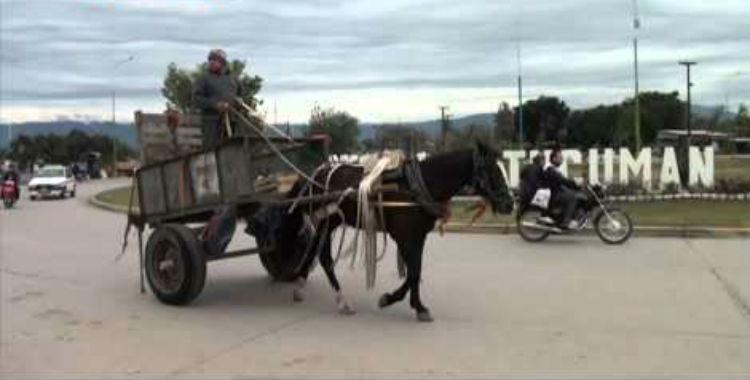 Un joven motociclista murió luego de chocar un carro tirado por caballos   El Diario 24