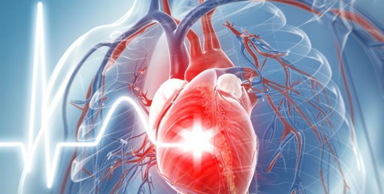 Desarrollan Inteligencia Artificial que predice las posibilidades de tener un ataque al corazón | El Diario 24
