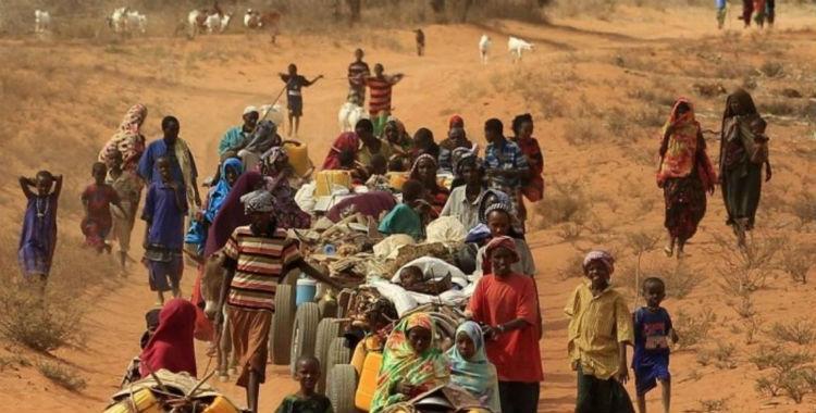 Nuevas enfermedades aparecen por el cambio climático | El Diario 24