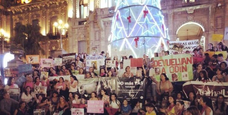 Cientos de tucumanos marcharon contra el maltrato animal y la tracción a sangre | El Diario 24