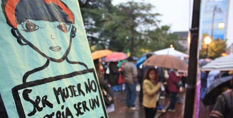 Cayeron un 43% los casos de femicidios en Tucumán | El Diario 24