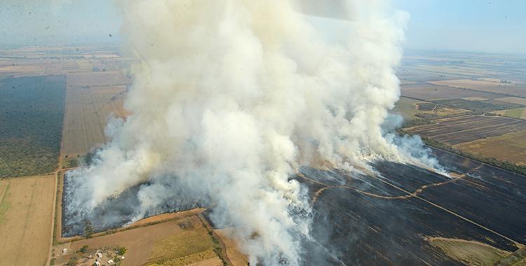 Está prohibido pero en Tucumán nada detiene la quema de cañaverales | El Diario 24