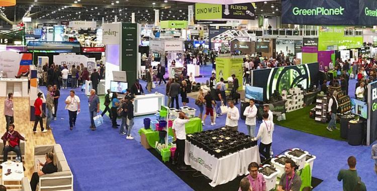 Comenzó la Expo Cannabis en un paso más hacia la legalización   El Diario 24