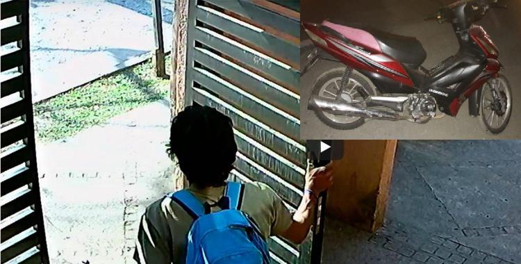 Le robó la moto a un jardinero que estaba trabajando   El Diario 24