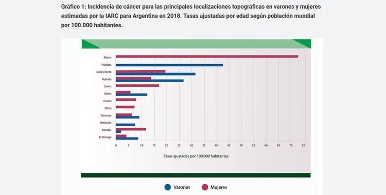 Cáncer de mama: Es necesario difundir las mamografías tanto como se hizo con el Papanicolaou | El Diario 24