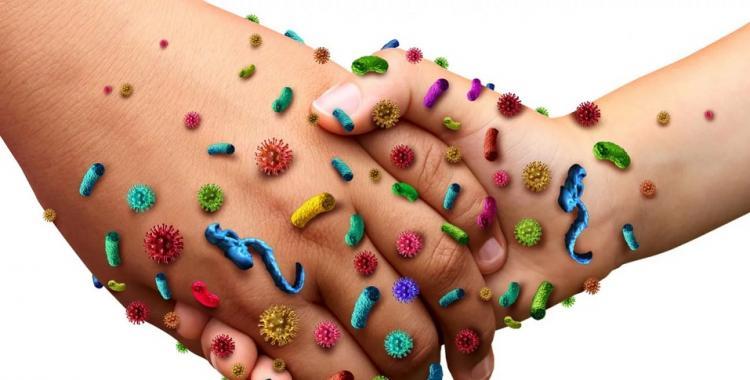 Confirman brote de Norovirus en San Luis   El Diario 24