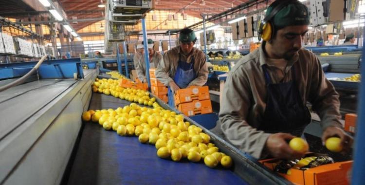 La economía de Tucumán no crece desde 2015   El Diario 24