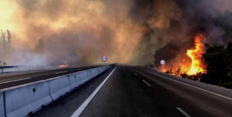 Emiten alerta roja por distintos incendios forestales en Chile | El Diario 24