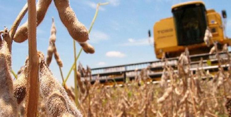 Analizan un bono para los jubilados y aumentar las retenciones de la soja | El Diario 24