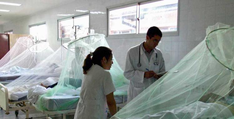 Sufrir dengue: Cómo es padecer las dolencias, según una infectada hoy curada | El Diario 24