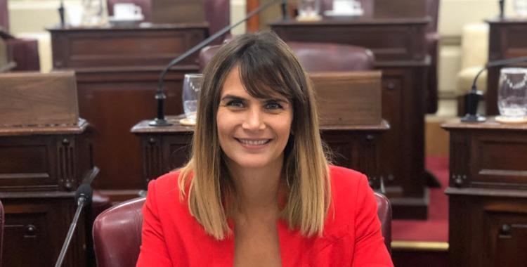 Paranoia y pánico...: Amalia Granata, durísima con la decisión de darle prisión domiciliaria a presos en plena pandemia | El Diario 24
