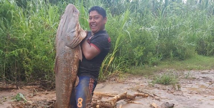 Sorpresa en Jujuy: Aparecen surubíes gigantes en el río San Francisco | El Diario 24