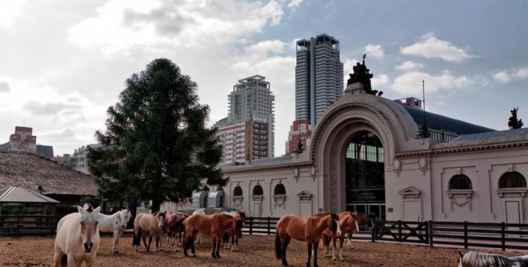 ¿La Sociedad Rural pidió subsidio? una polémica divide a la entidad   El Diario 24