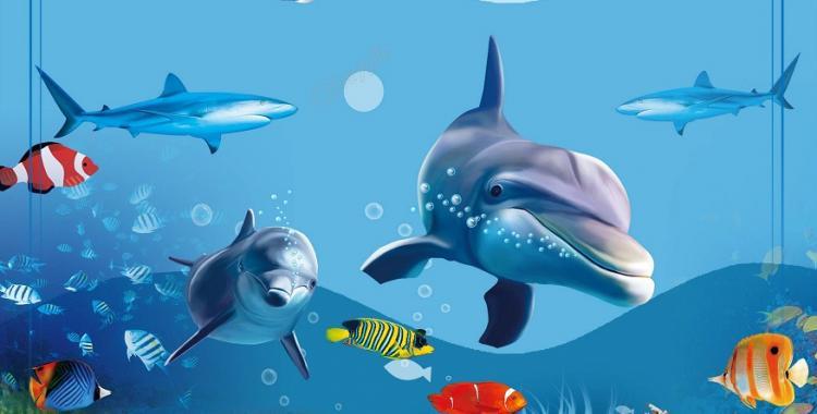 Por qué el 8 de junio es el Día Mundial de los Océanos   El Diario 24