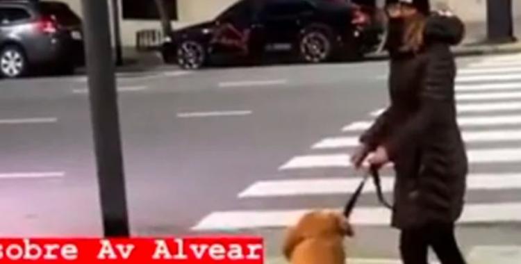 VIDEO: Una mujer le pegó piñas y patadas a su perro golden y fue escrachada en las redes | El Diario 24