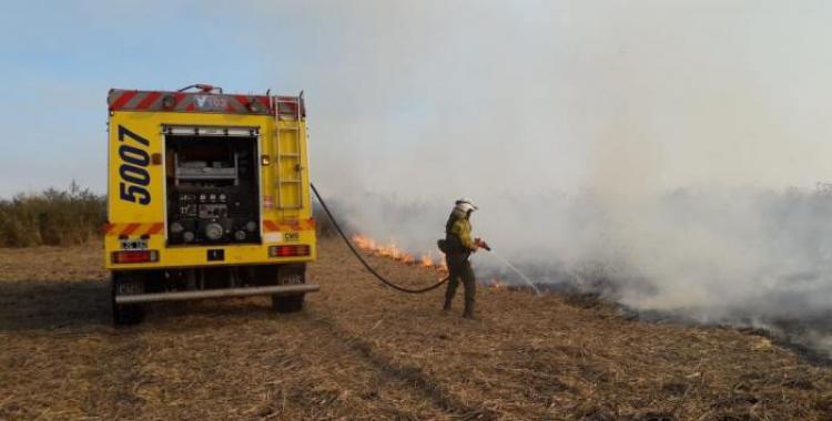 Las condiciones climáticas agravan la quema de pastizales: principales zonas afectadas | El Diario 24