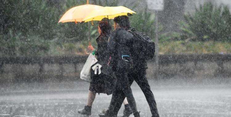 ¿Más o menos lluvias? Mirá como será el próximo trimestre en Tucumán y el norte argentino | El Diario 24
