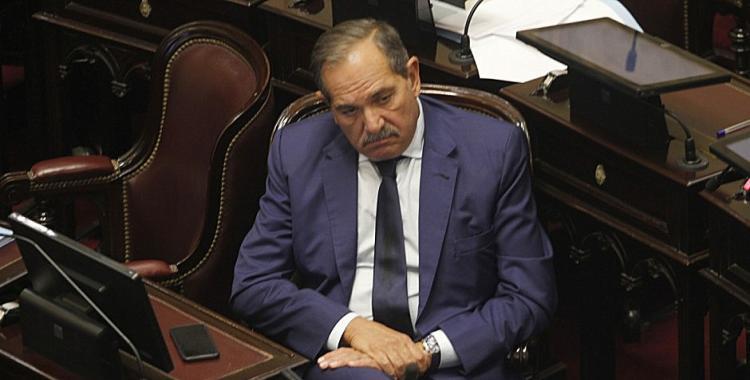 Encontraron 200 vacunos robados en un campo de José Alperovich: la respuesta del senador | El Diario 24