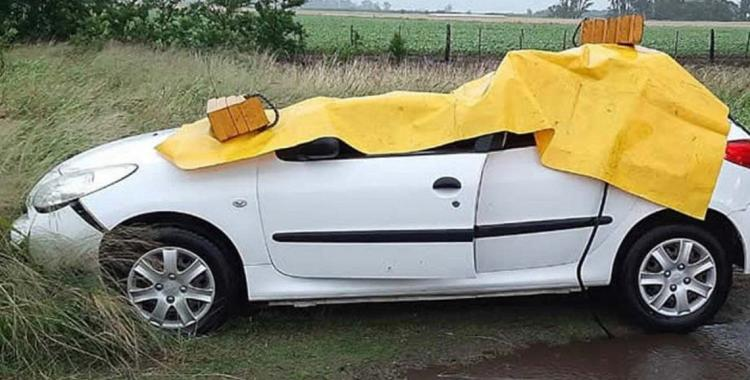Un árbol cayó sobre un auto y mató a una nena que viajaba junto a sus padres | El Diario 24