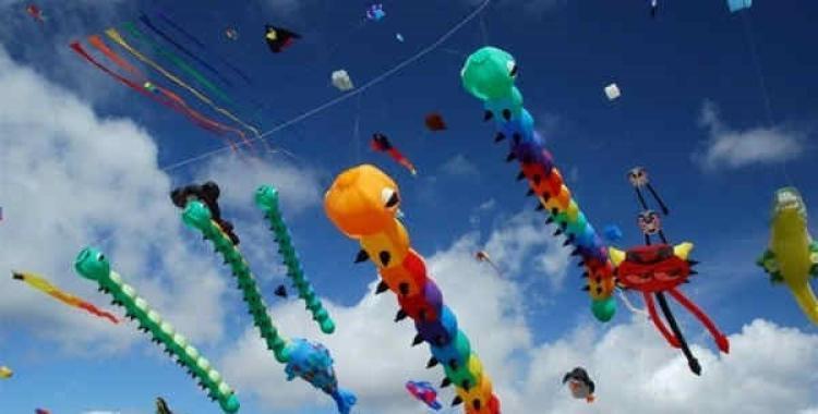 Por qué el 14 de enero es el Día Internacional de la Cometa | El Diario 24