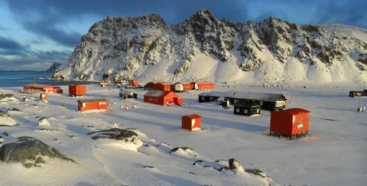 Por qué el 22 de febrero es el Día de la Antártida Argentina | El Diario 24