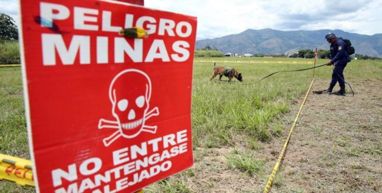 Por qué el 4 de abril es el Día Internacional de información sobre el peligro de las minas | El Diario 24