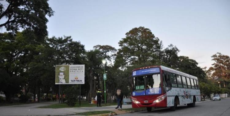 Los Ecobuses trasladaron a más de 1.000 taficeños | El Diario 24