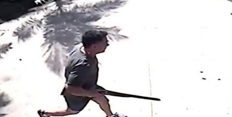 VIDEO Un médico, director de un hospital, ingresó con una escopeta a una fábrica para matar un perro | El Diario 24