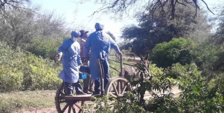 A la manera del campo: enfermeros llevan la vacuna contra el covid-19 en un carro de tracción a sangre | El Diario 24