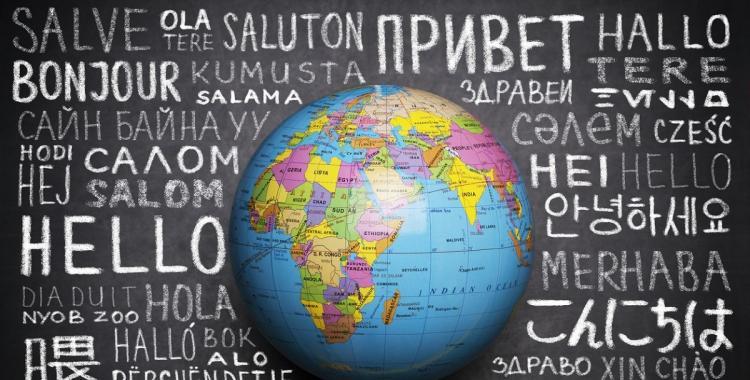 Los idiomas extranjeros también tienen palabras para todo   El Diario 24