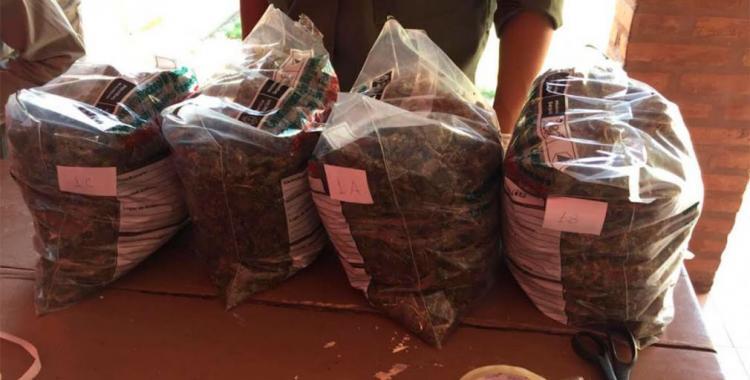 Recibió una encomienda con 8 kilos de marihuana y terminó tras las rejas | El Diario 24