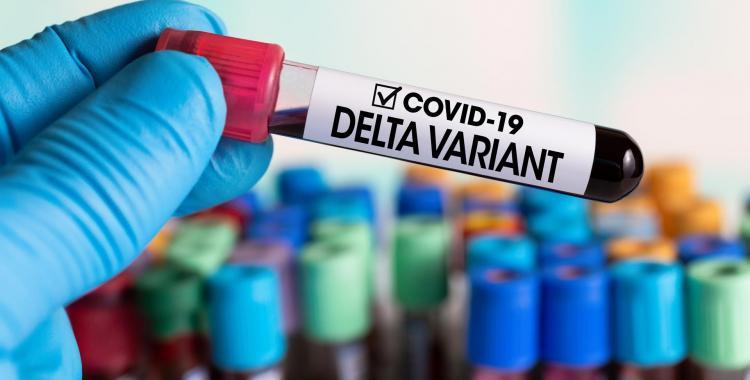 Variante Delta: reportan cinco nuevos casos, uno sin nexo epidemiológico   El Diario 24