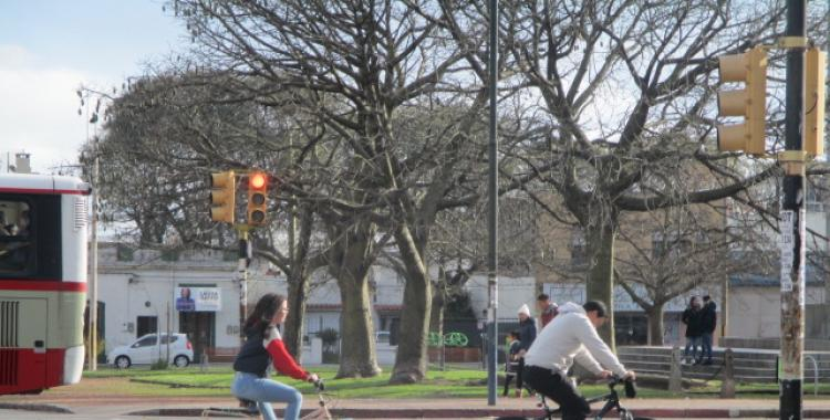 Bicicletas: 40% off y 18 cuotas sin interés por la semana de la movilidad   El Diario 24
