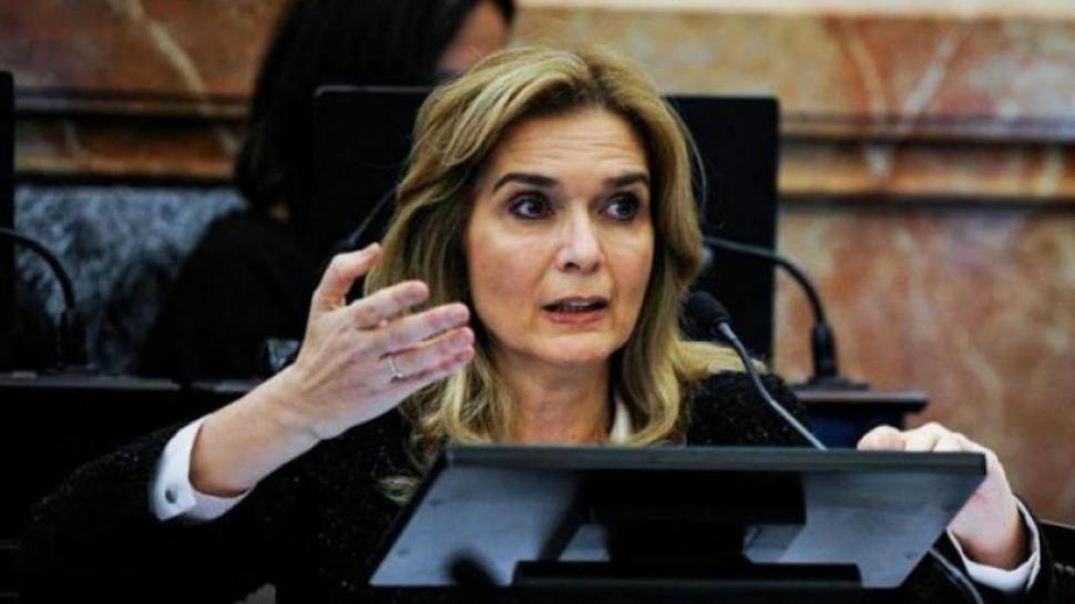Elías de Pérez aclara que se abstuvo de votar contra el golpe en Bolivia a pesar de figurar en contra - El Diario 24